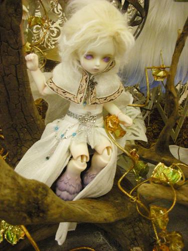 DSCN6838.jpg