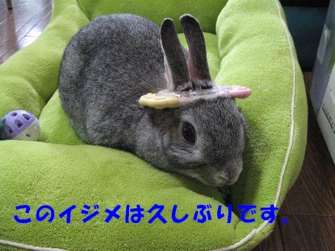 sa-ko 20110607 001