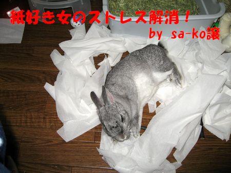 sa-ko 20110727 001