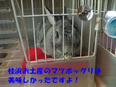 sa-ko 20110819 001