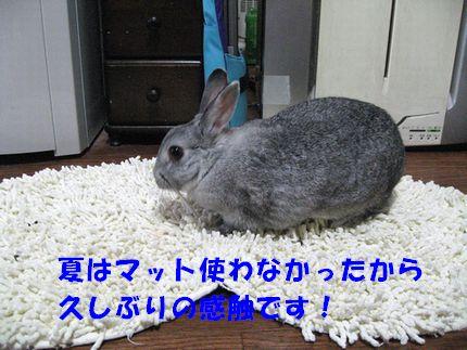 sa-ko 20110831 001