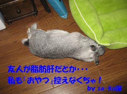 sa-ko 20110912 001