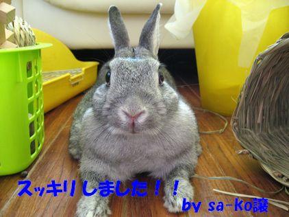 sa-ko 20110916 002