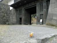 ed.江戸城 20110306 002