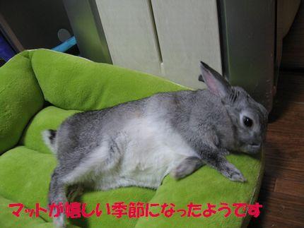 sa-ko 20110926 001