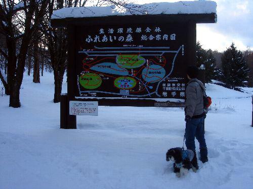 森林公園②+