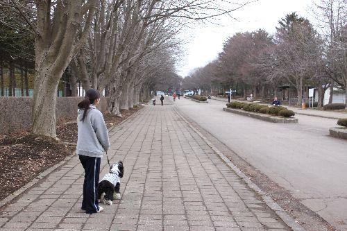 運動公園④