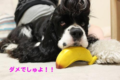 バナナ4の2