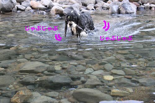 川11の2