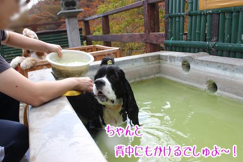 温泉5の2