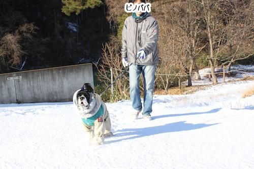 雪散歩6の2