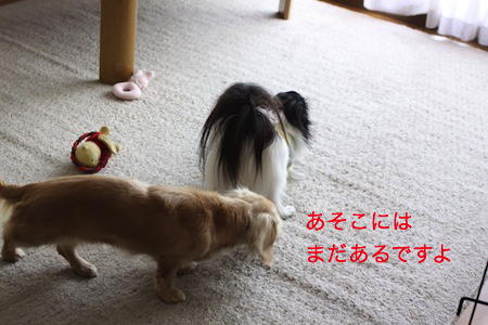 IMG_7796.jpg