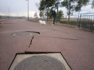110311地震1