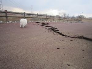 110311地震2