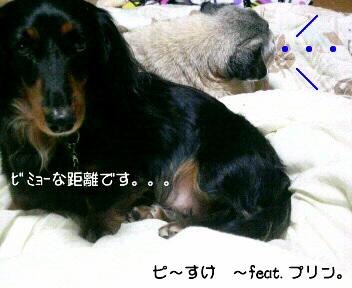 20100322015420.jpg