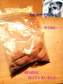 20101107015615.jpg
