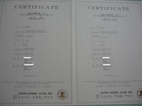 2011 08 26_1768