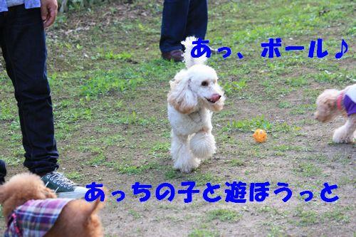 2011 09 24_カンパーニャ伊勢_2062