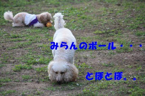 2011 09 24_カンパーニャ伊勢_2076