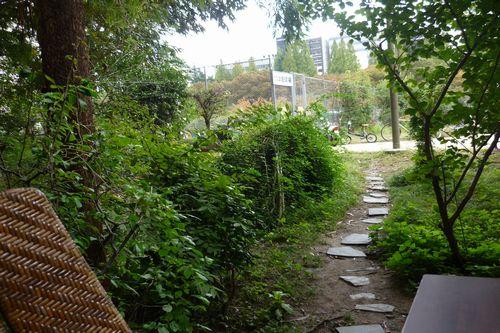 2011 10 23_靱公園バラ園とカフェ壽_2150