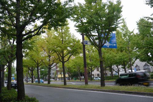 2011 10 23_靱公園バラ園とカフェ壽_2173