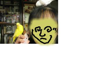 snap_piyopiyodaigaku_20132614340.jpg