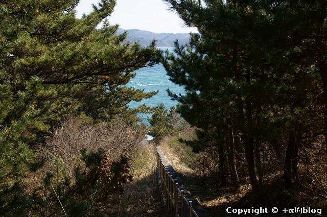 ooshima1104a_eip.jpg