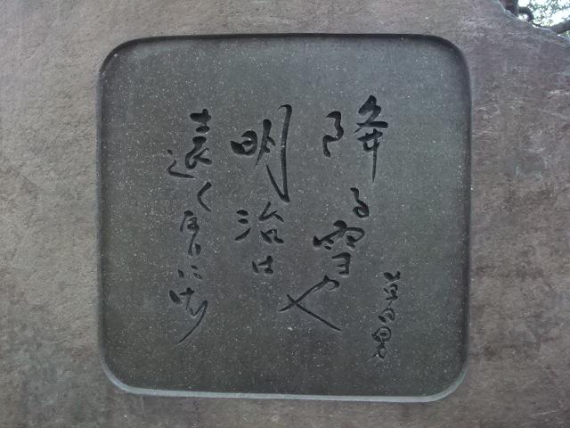 2010-01-23b.jpg