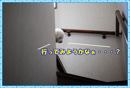 DSC_3907.jpg