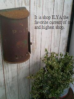 ilya3