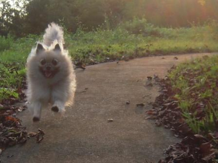 ジャンプ!!