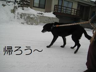 2010_0105_140822-IMG_8801.jpg