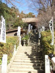 018杉本寺