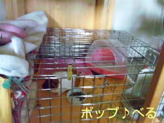 20110316_230910.jpg