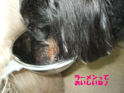 2010_01070349.jpg