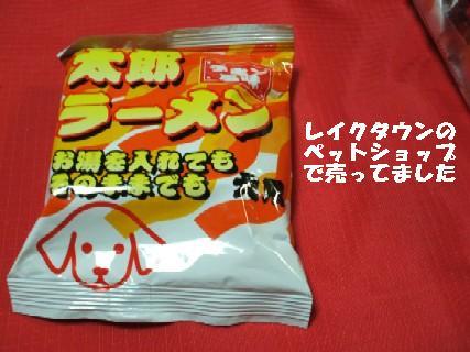 2010_01070377.jpg