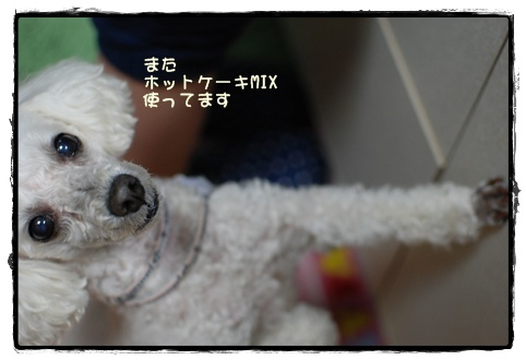 DSC_9966_R.jpg