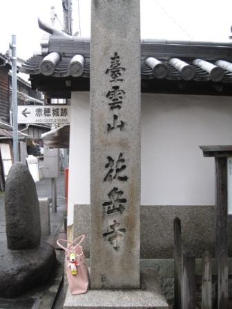 220131花岳寺2
