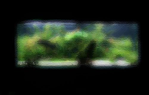 レイアウト画像-1
