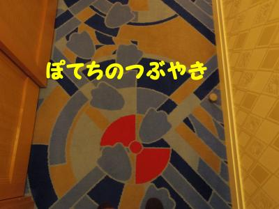 20130207 絨毯