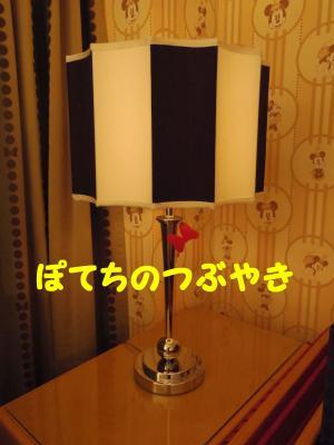 20130208 ランプ