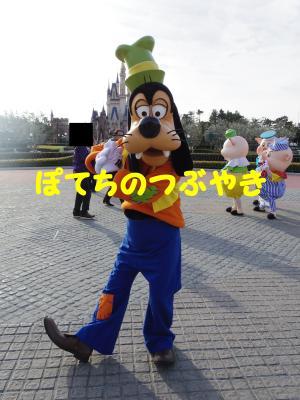 20130209 グーさん
