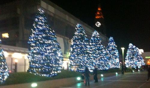 新宿のクリスマスツリー