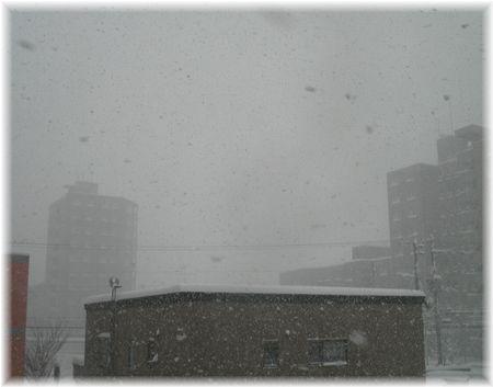 猛雪景色-1