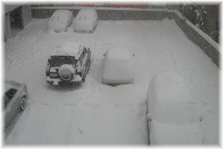 猛雪景色-2