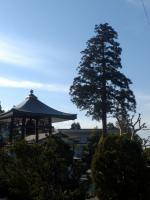 大川寺駅前