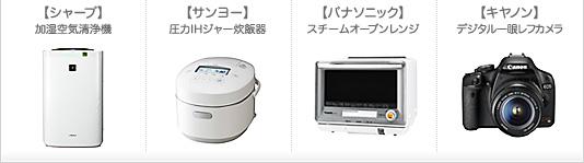 item_500_01.jpg