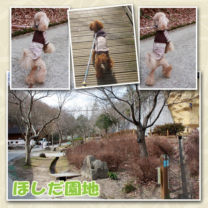 20_20120218205021.jpg