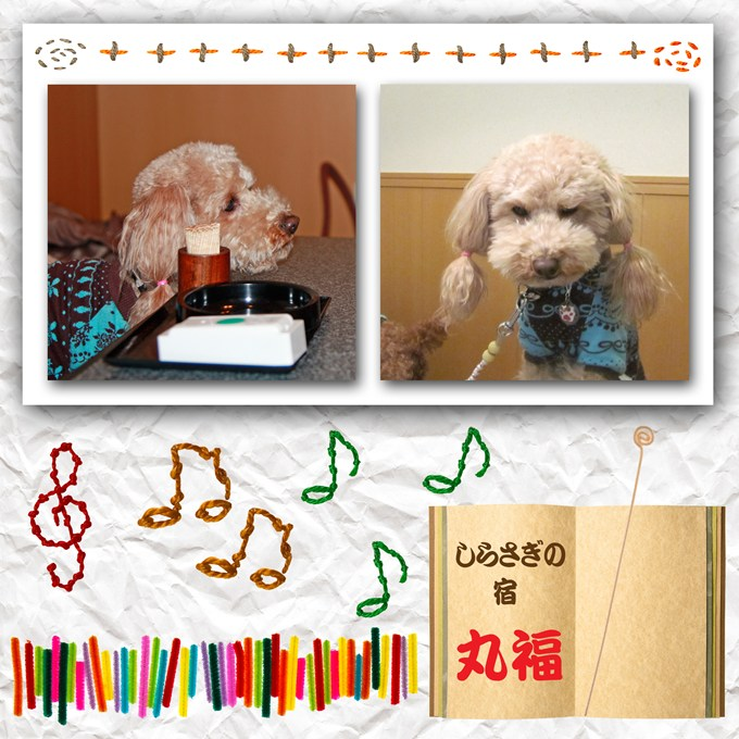 23_20120115183725.jpg