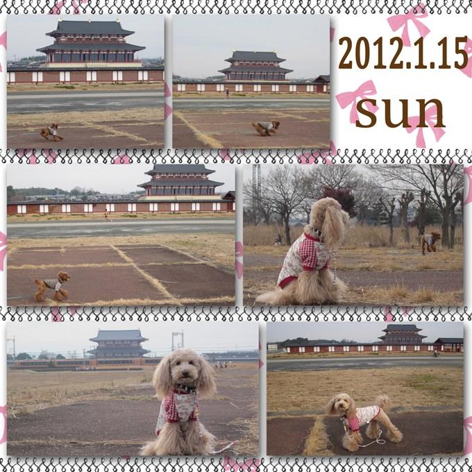 3_20120121100109.jpg